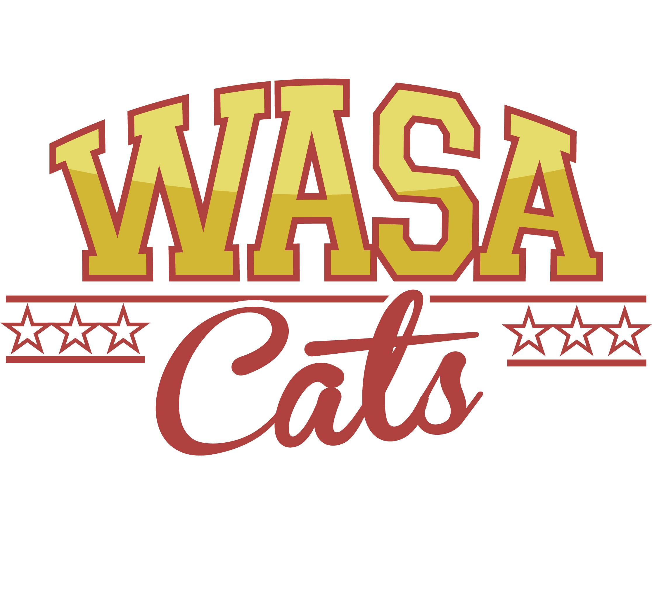 Wasa Catsien logo
